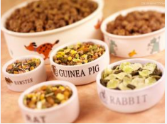How to choose the right pet food