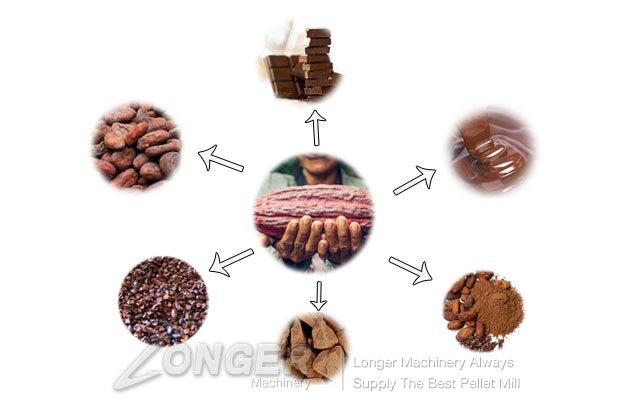 Cocoa Bean Processing Line|Coco Bean Plant