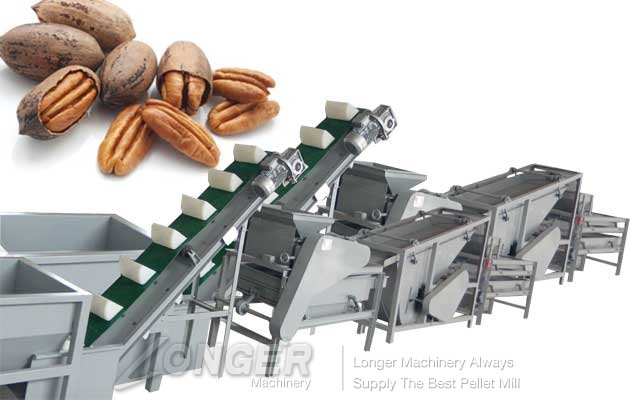 automatic peacans cracking and shelling machine with low price