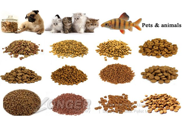 Animal feed pellet machine lg 3 for Can i give my dog fish oil