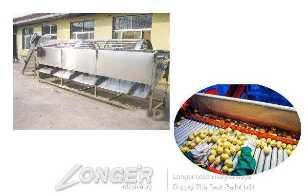 potato sorting machine