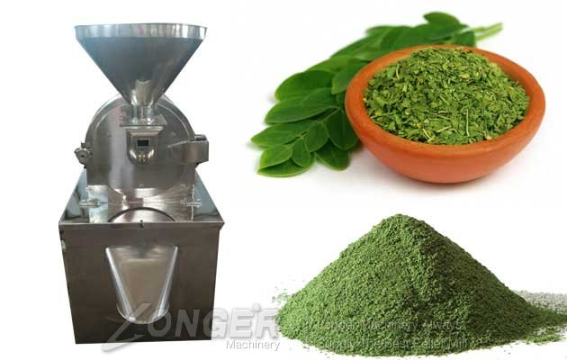 moringapowder makingmachine