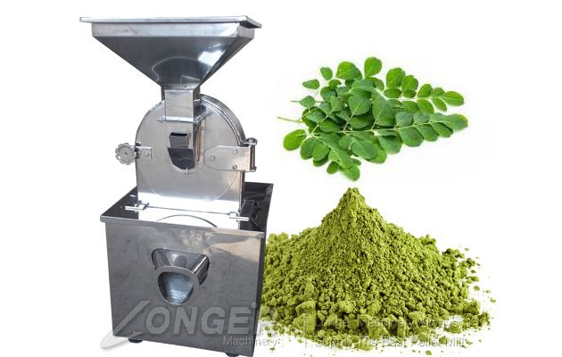 how to make moringa seed powder