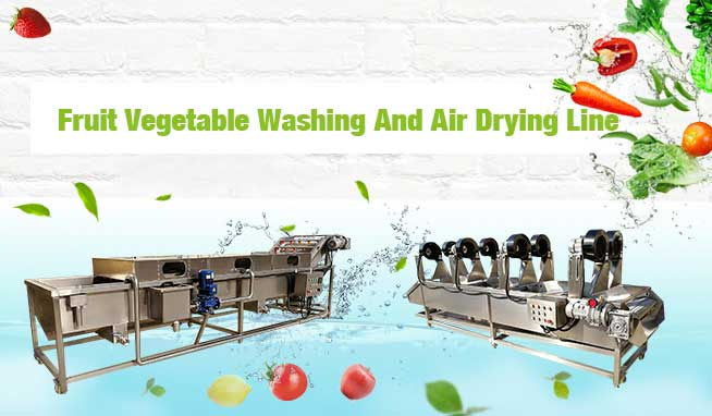 Fruit Vegetable Washing And Air Drying Line